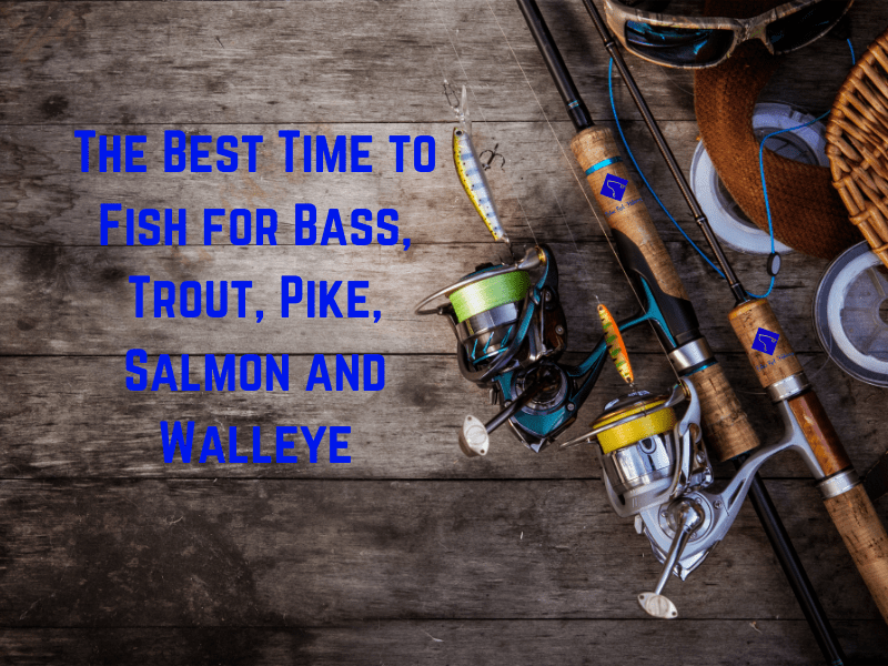 Best Times to Fish for Bass, Trout, Pike, Salmon and Walleye